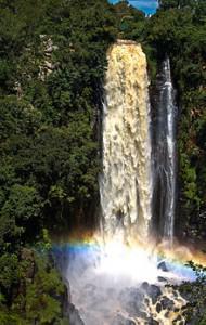 220px-Thomson's_Falls