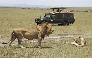 Our-Safari-Vehicle-